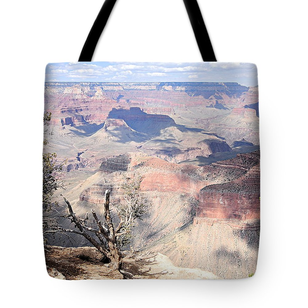 Grand Canyon National Park Tote Bag featuring the photograph Pastel Canyon by Larry Ricker