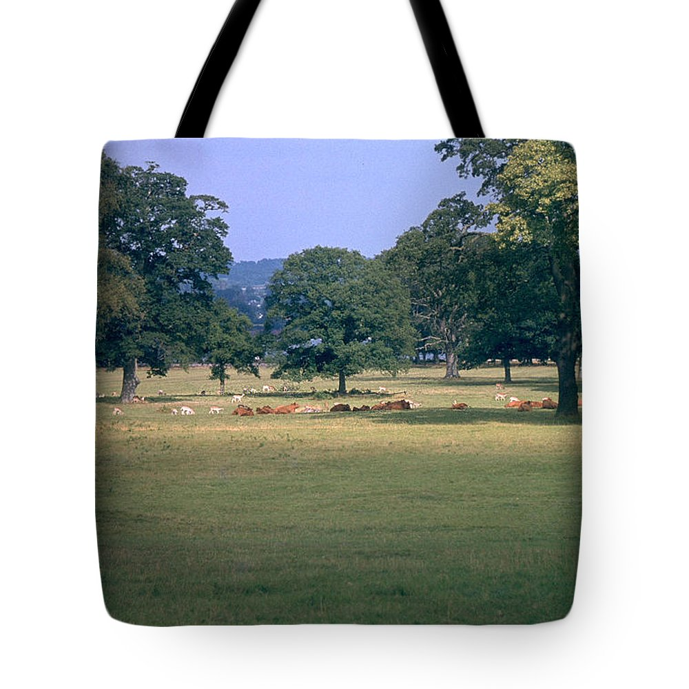 Great Britain Tote Bag featuring the photograph Pasture by Flavia Westerwelle