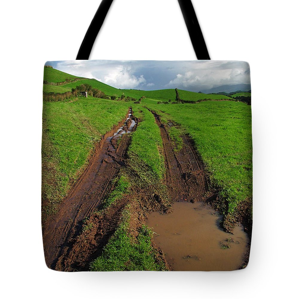 Azores Tote Bag featuring the photograph Pasture by Gaspar Avila