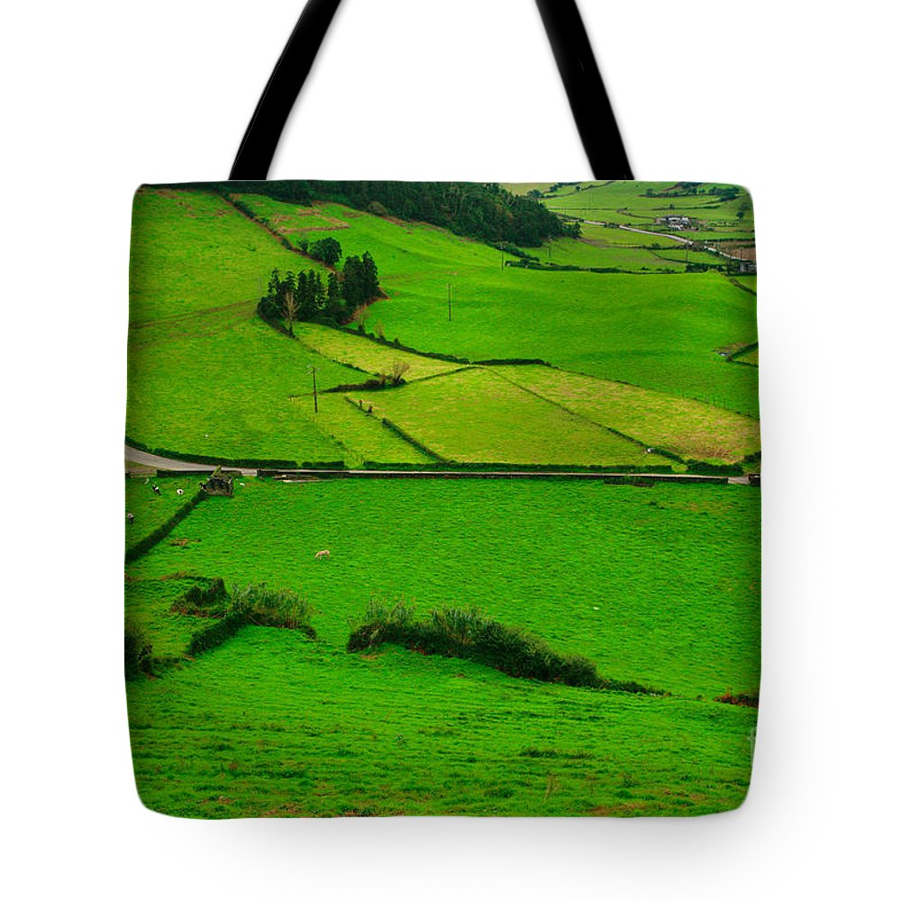 Dairy Tote Bag featuring the photograph Pastures In The Azores by Gaspar Avila