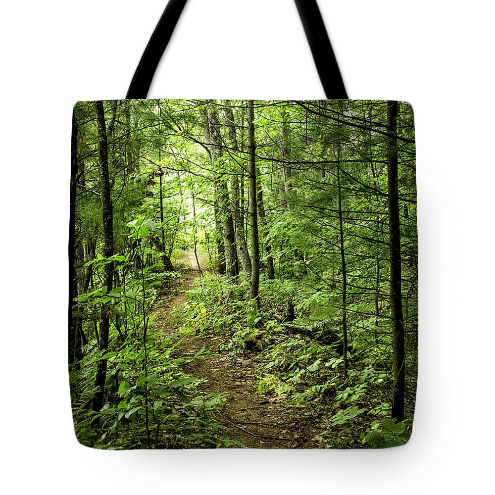 Michigan Tote Bag featuring the photograph Path In The Woods by Timothy Hacker