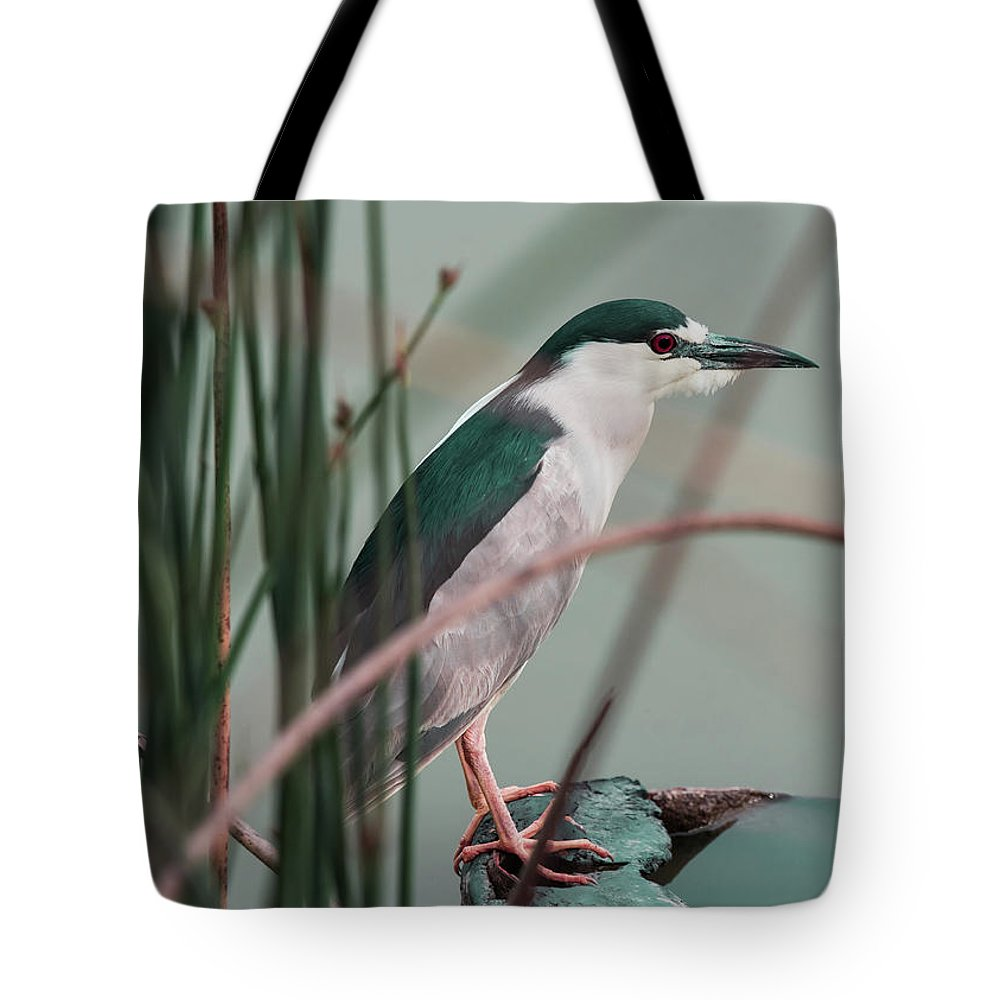 Dreaming Tote Bag featuring the photograph Patiently Waiting by Tran Boelsterli