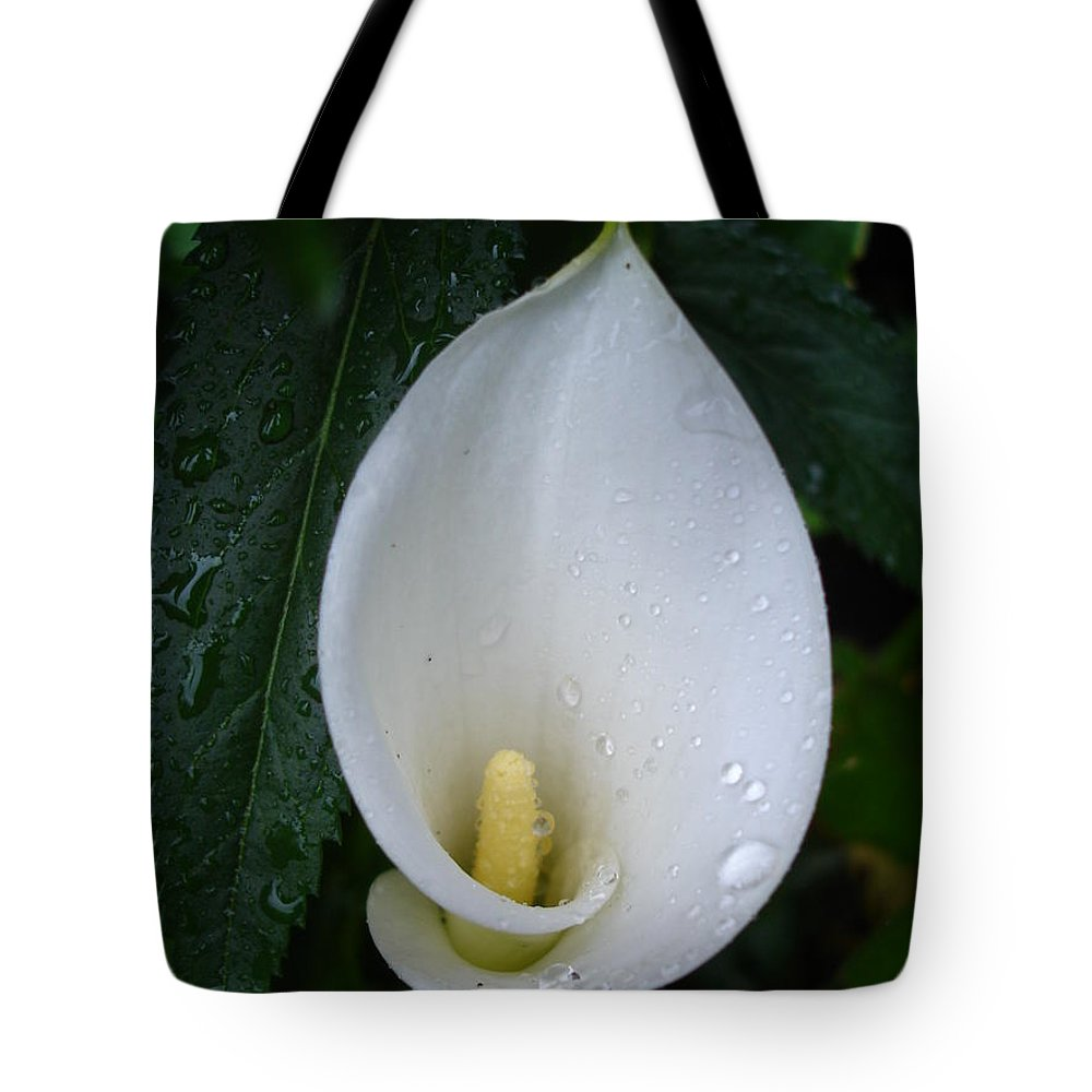 Peace Tote Bag featuring the photograph Peace Lily by Susan Baker