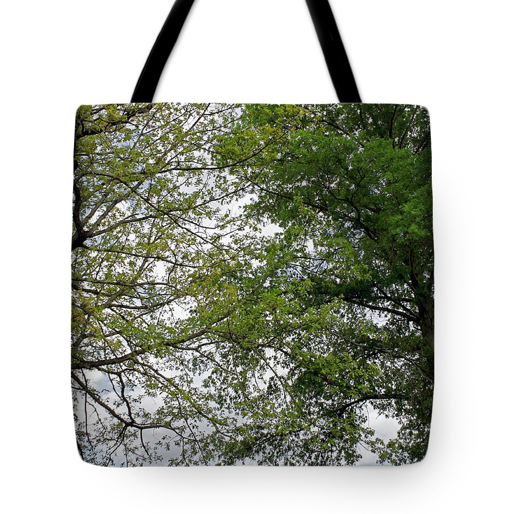 Landscape Tote Bag featuring the photograph Peaceful Grandeur by Todd Blanchard