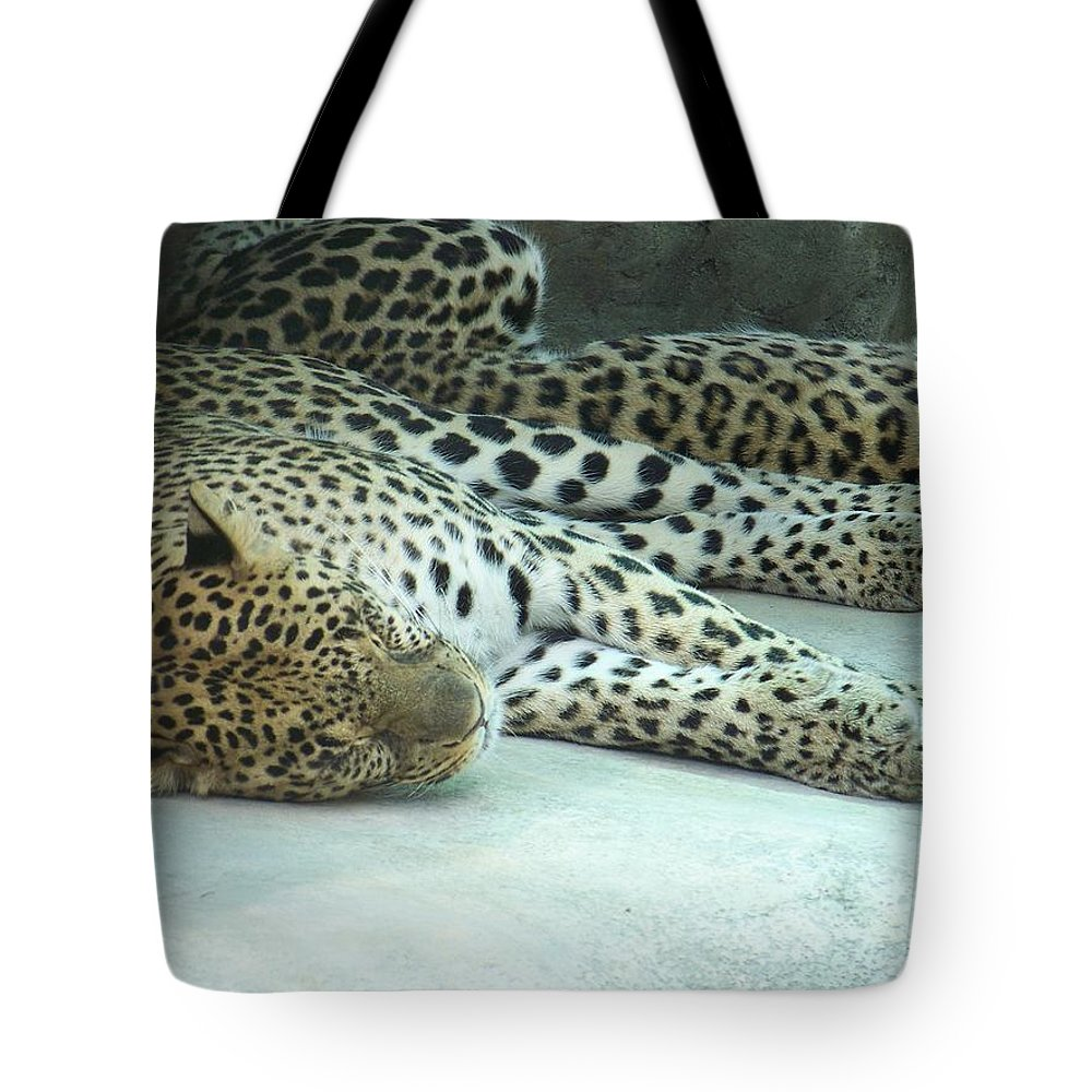 Chetah Tote Bag featuring the photograph Peaceful Sleep by Laurie Paci