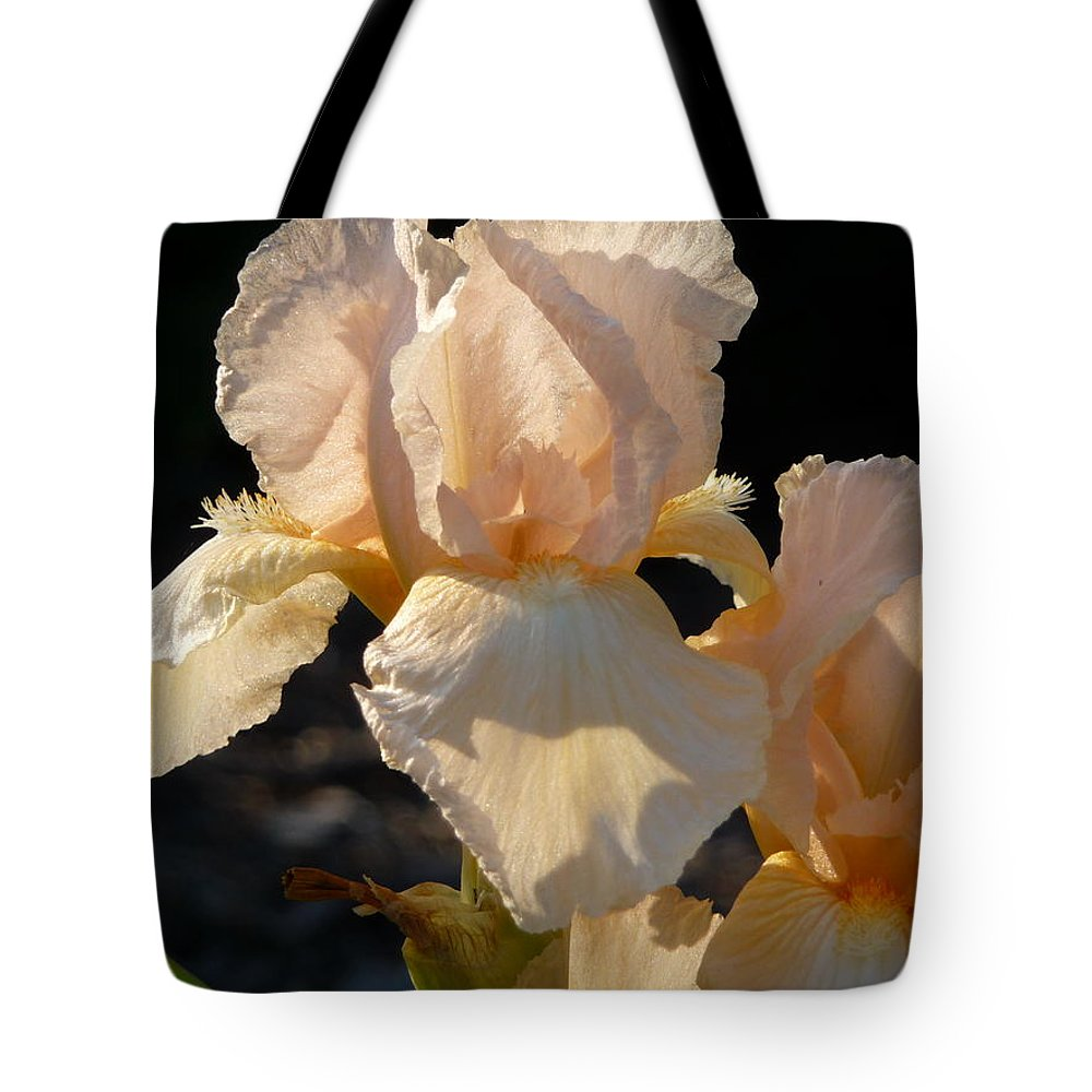 Flower. Iris Tote Bag featuring the photograph Peach Bearded Iris by Ruth Kamenev