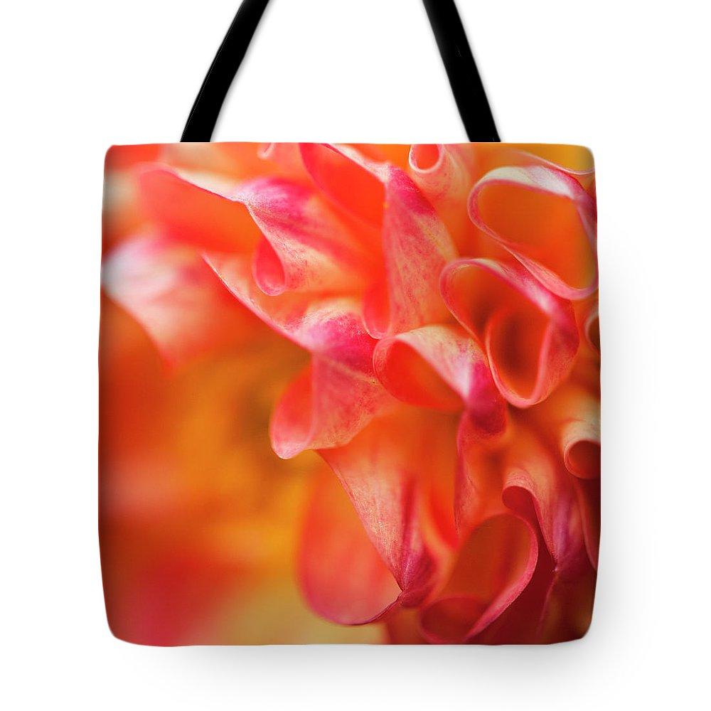 Dahlia Tote Bag featuring the photograph Peach Color Dahlia by Alida Thorpe