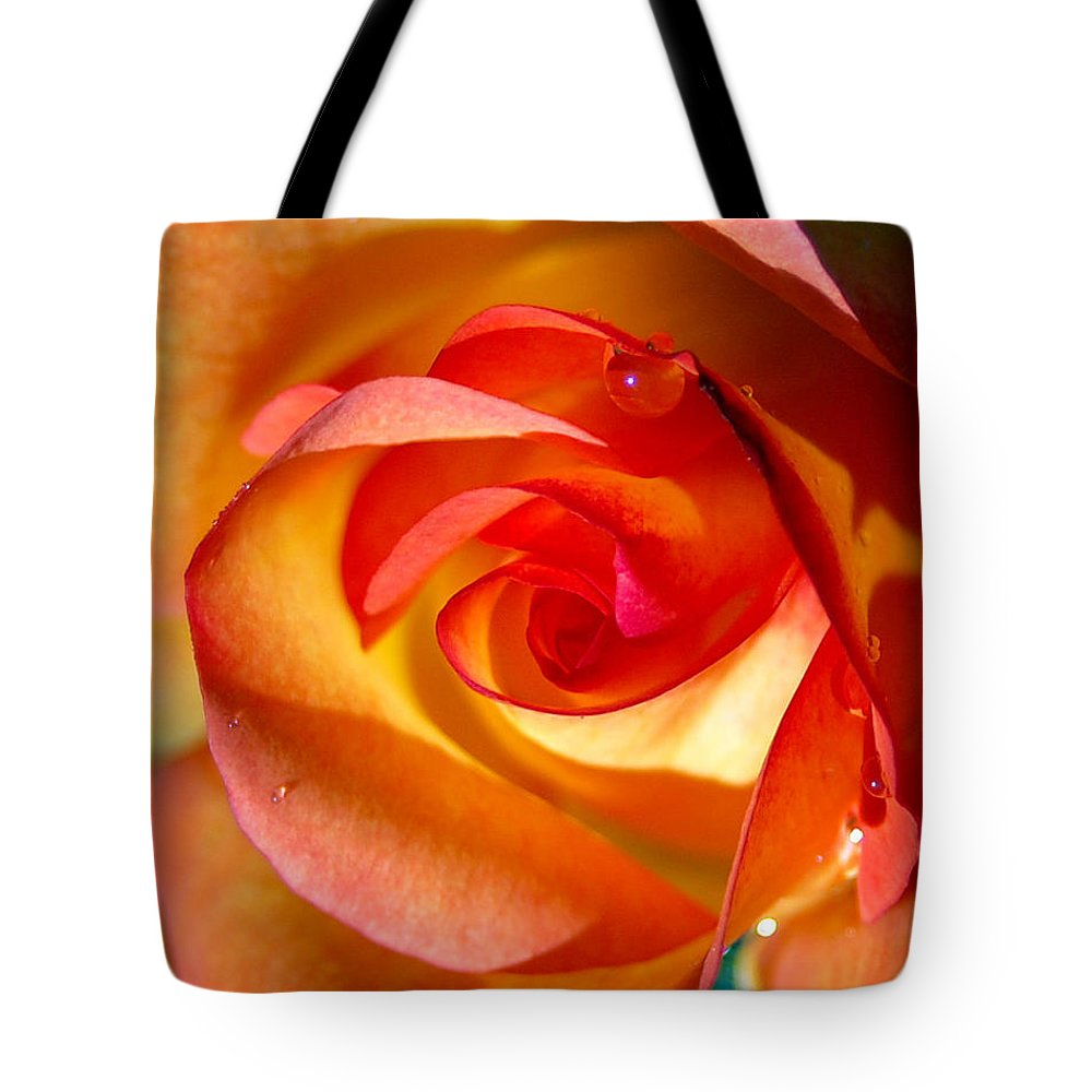 Rose Tote Bag featuring the photograph Peach Rose by Amy Fose