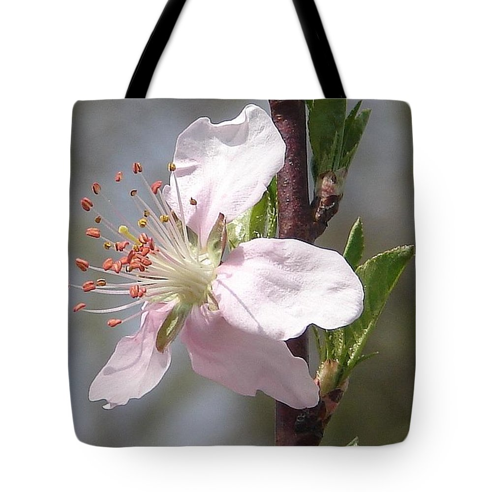 Pink Tree Branch Green Leaves Tote Bag featuring the photograph Peach Tree 2 by Luciana Seymour
