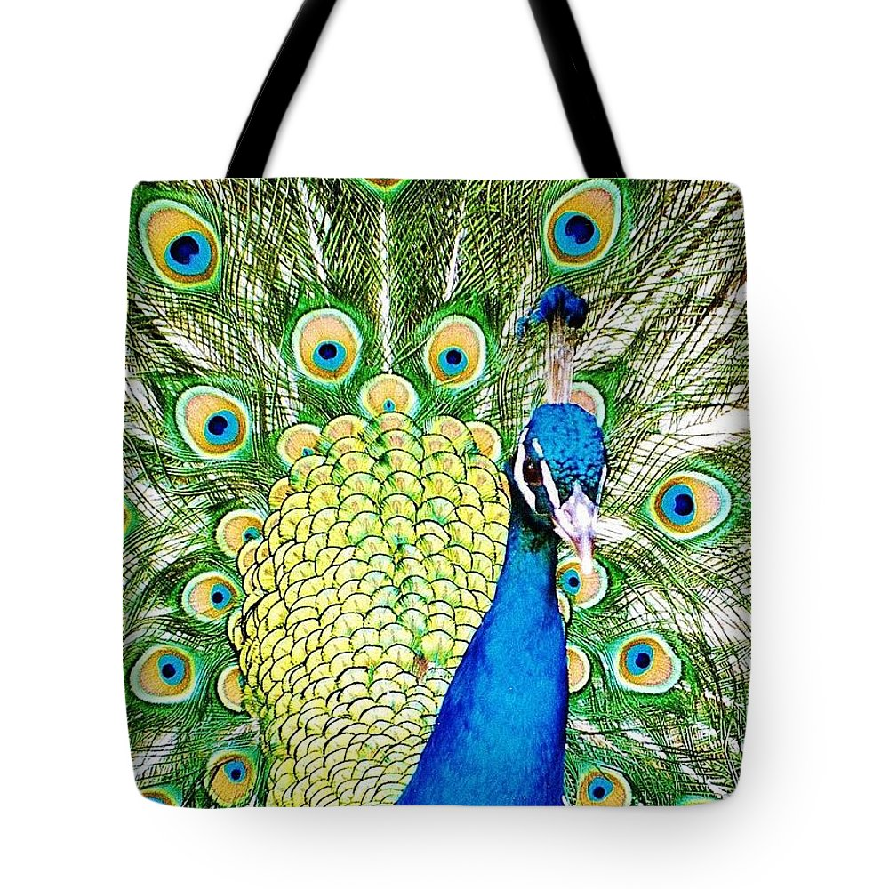 Peacock Tote Bag featuring the photograph Peacock by Daniel Thompson