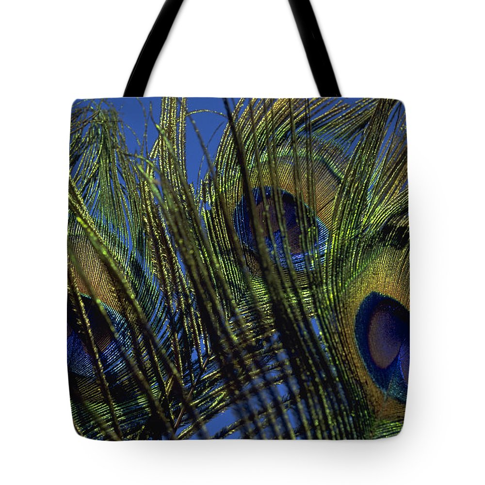 Feather Tote Bag featuring the photograph Peacock Feathers by Michael Mogensen