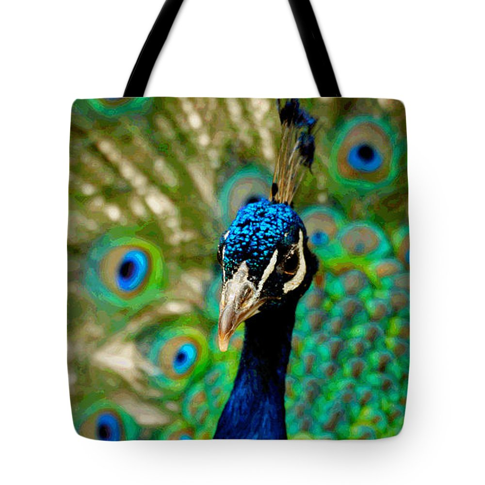 Peacock Tote Bag featuring the photograph Peacock by Lisa Maffia-reynoso