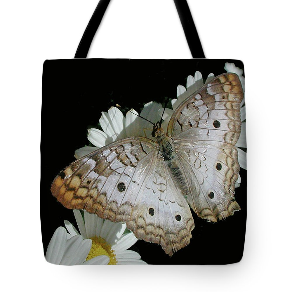Butterfly Tote Bag featuring the photograph Peacock Twist by AJ Harlan