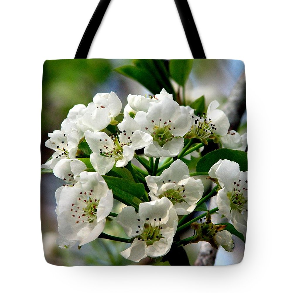 Pear Tree Blossum Tote Bag featuring the photograph Pear Tree Blossoms 1 by J M Farris Photography