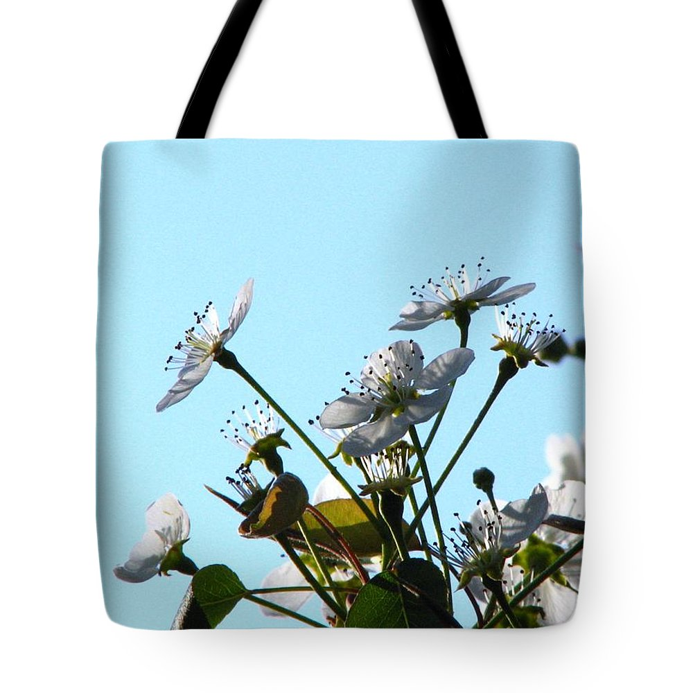 Pear Tree Blossum Tote Bag featuring the photograph Pear Tree Blossoms 5 by J M Farris Photography