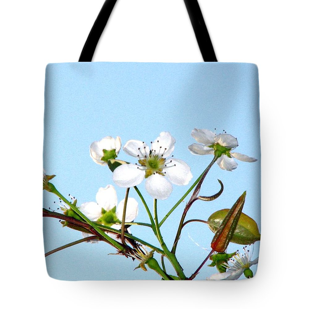 Pear Tree Blossum Tote Bag featuring the photograph Pear Tree Blossoms 6 by J M Farris Photography