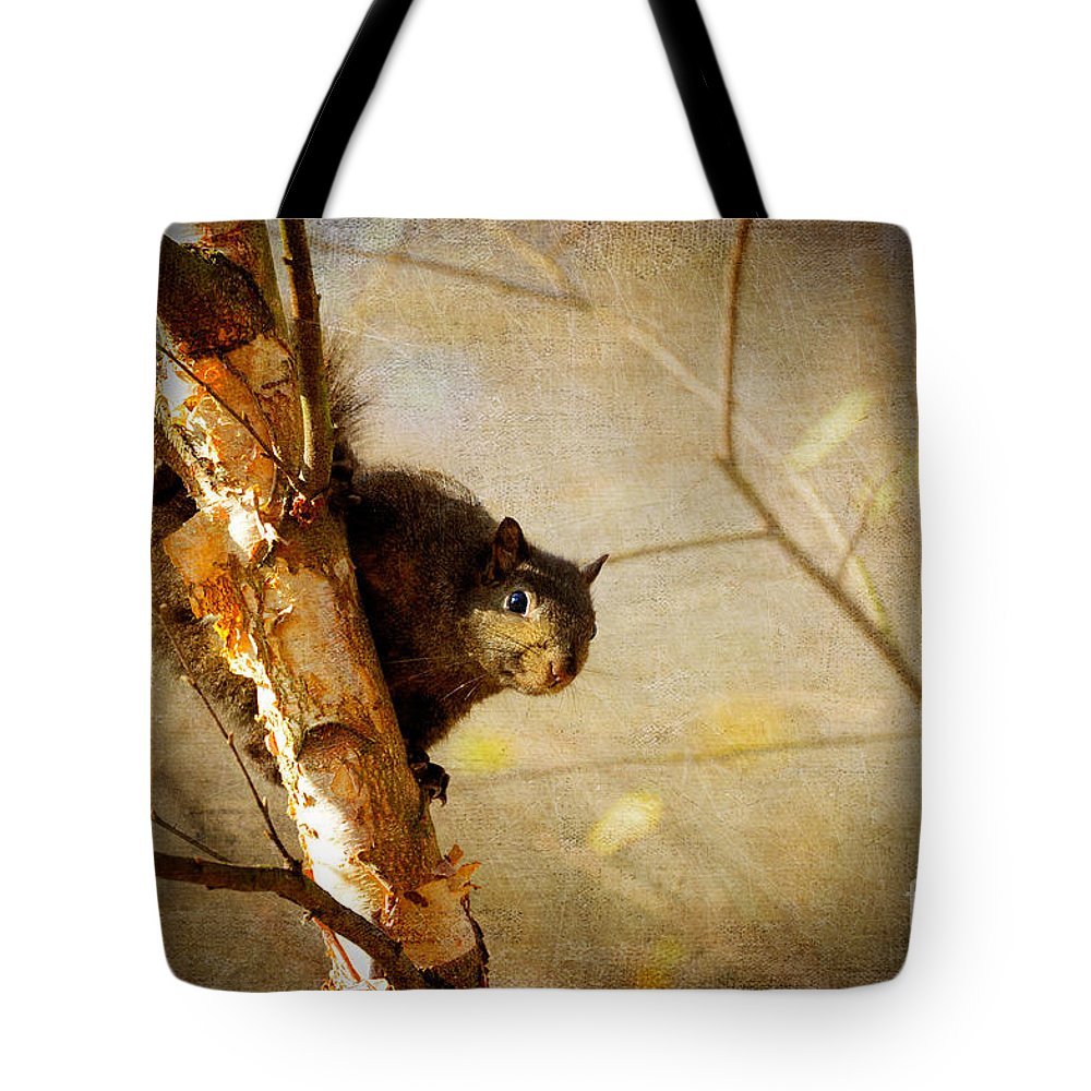Squirrel Tote Bag featuring the photograph Peek-a-boooo by Lois Bryan