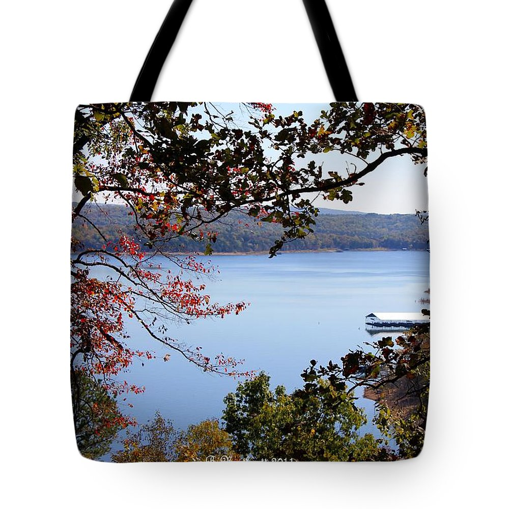 Beaver Lake Tote Bag featuring the photograph Peek-a-view by Betty Northcutt
