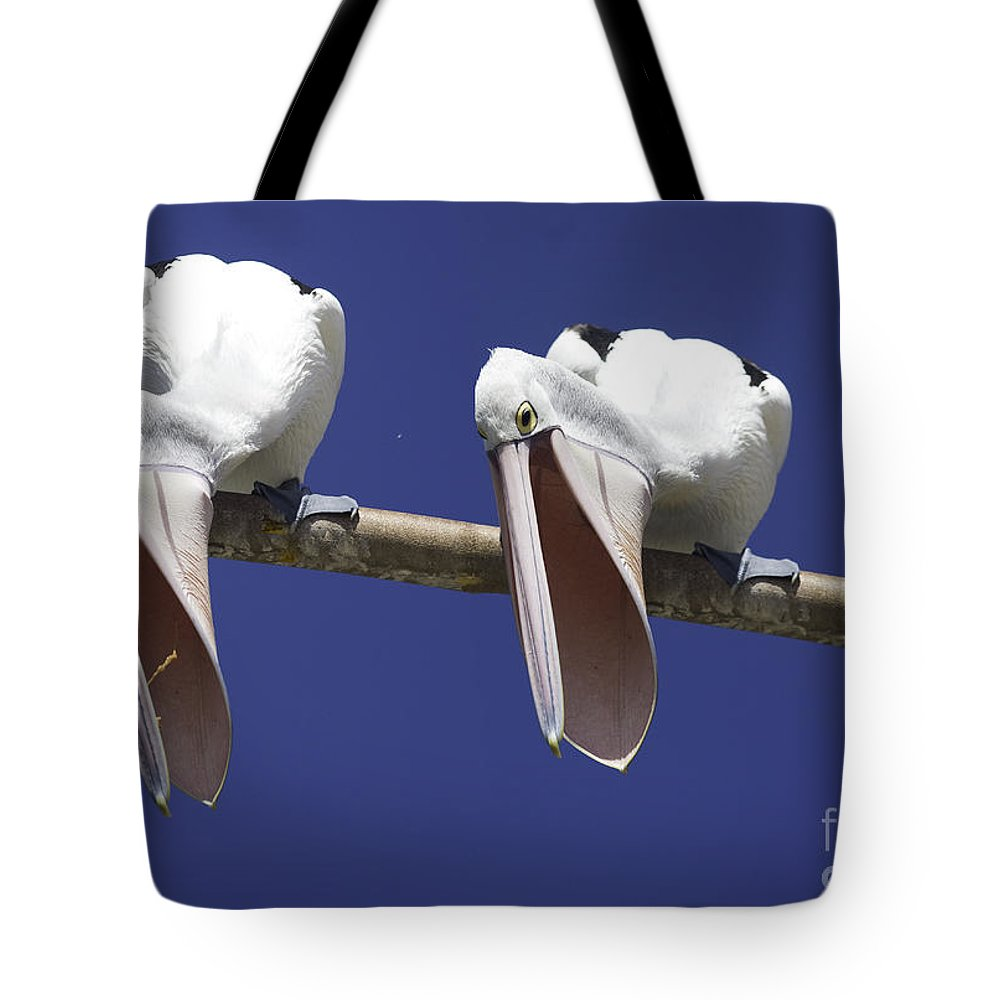 Pelican Tote Bag featuring the photograph Pelican Burp by Sheila Smart Fine Art Photography