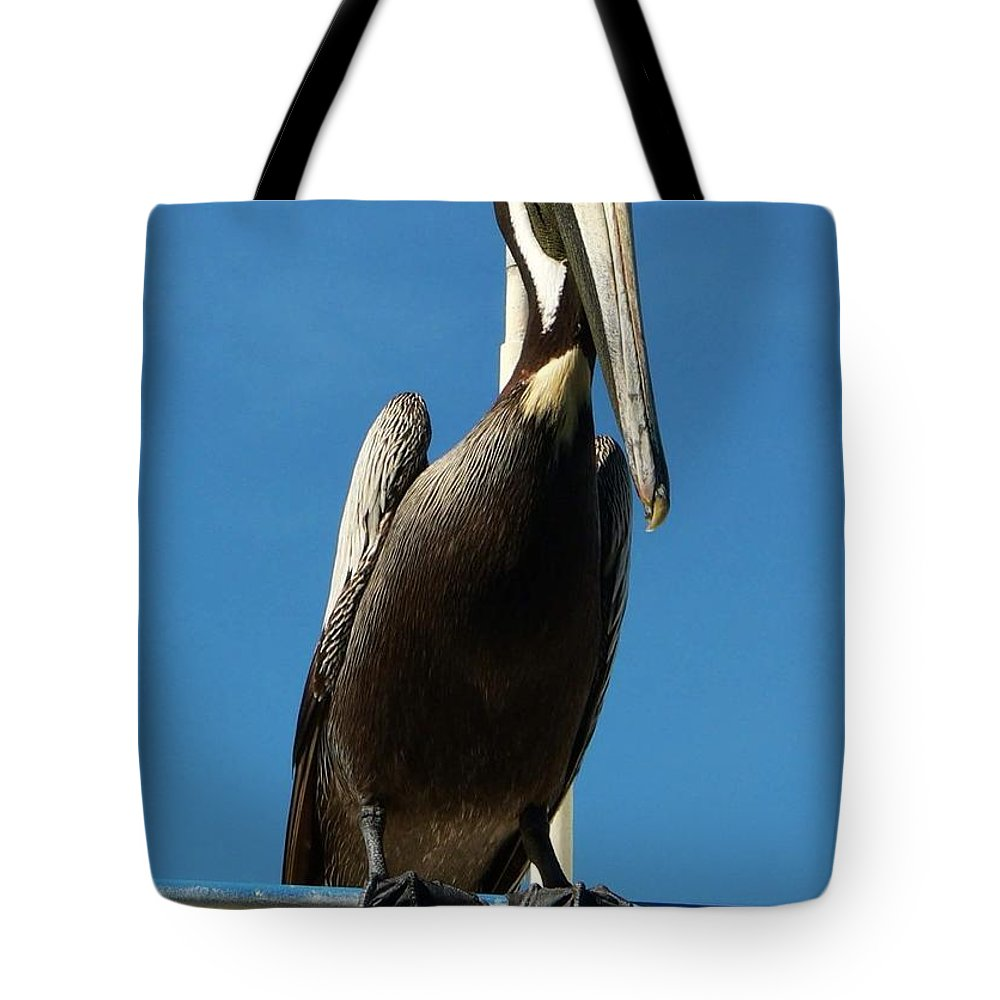 Pelican Tote Bag featuring the photograph Pelican Dreams by Melissa Haney