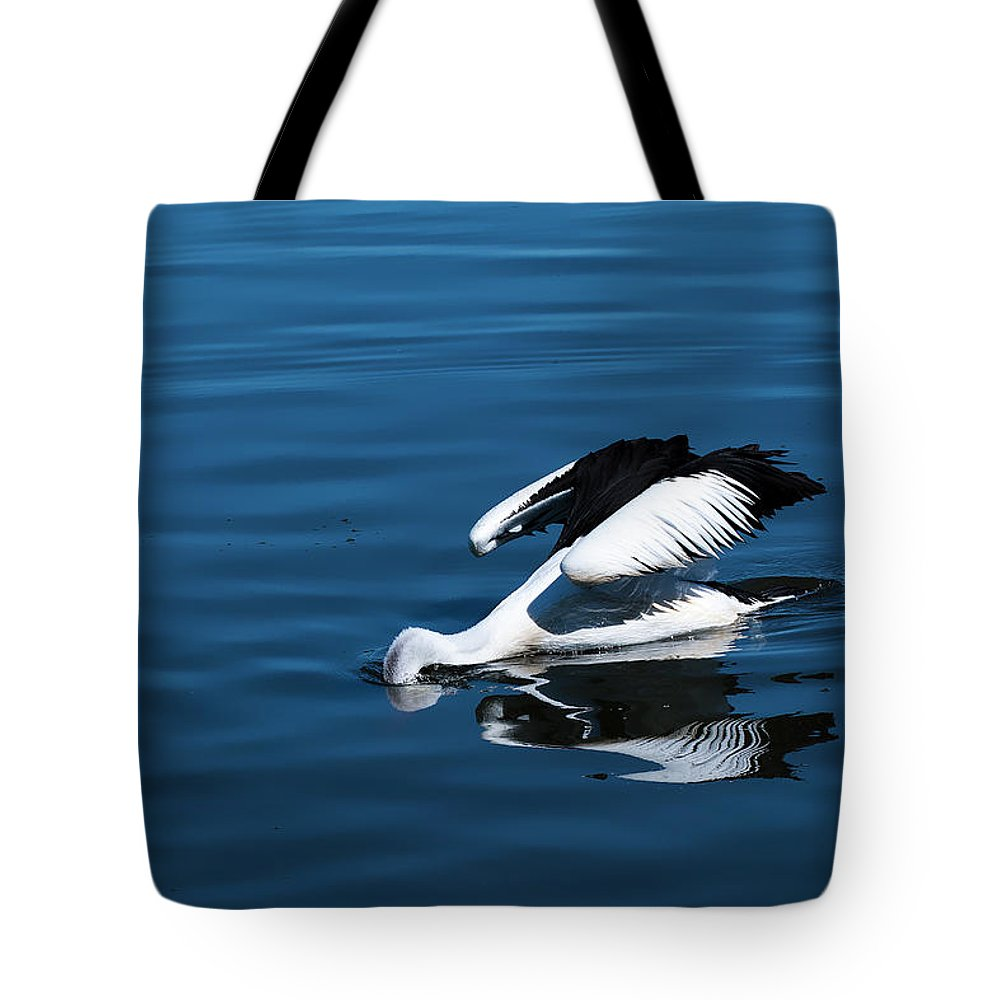 Pelican Photography Tote Bag featuring the photograph Pelican Fishing 666 by Kevin Chippindall