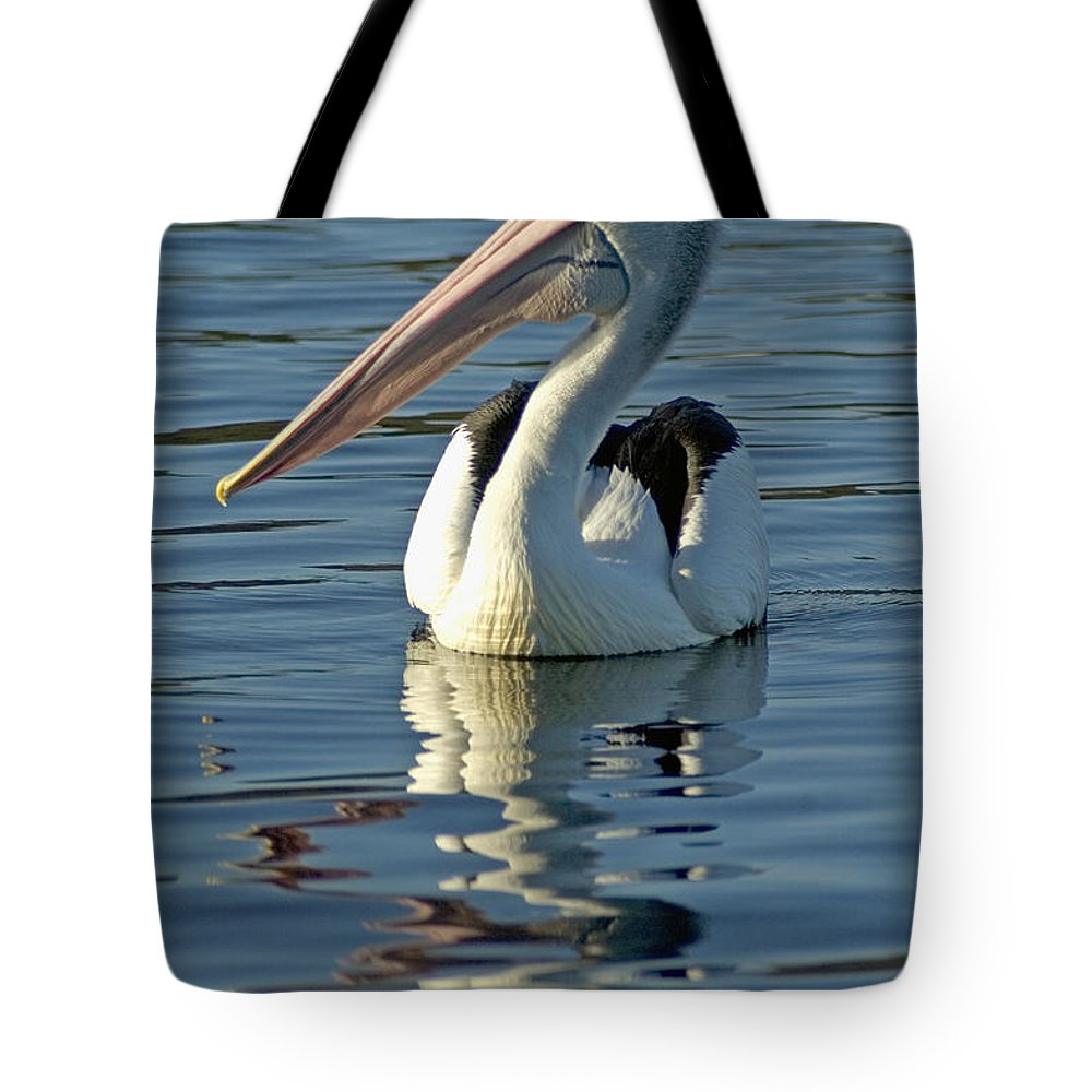 Afternoon Tote Bag featuring the photograph Pelican by Himani - Printscapes