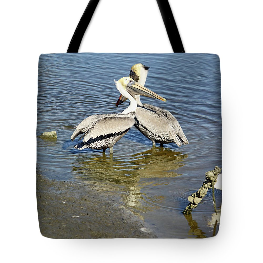 Pelican Tote Bag featuring the photograph Pelican Love by Suzanne Gaff