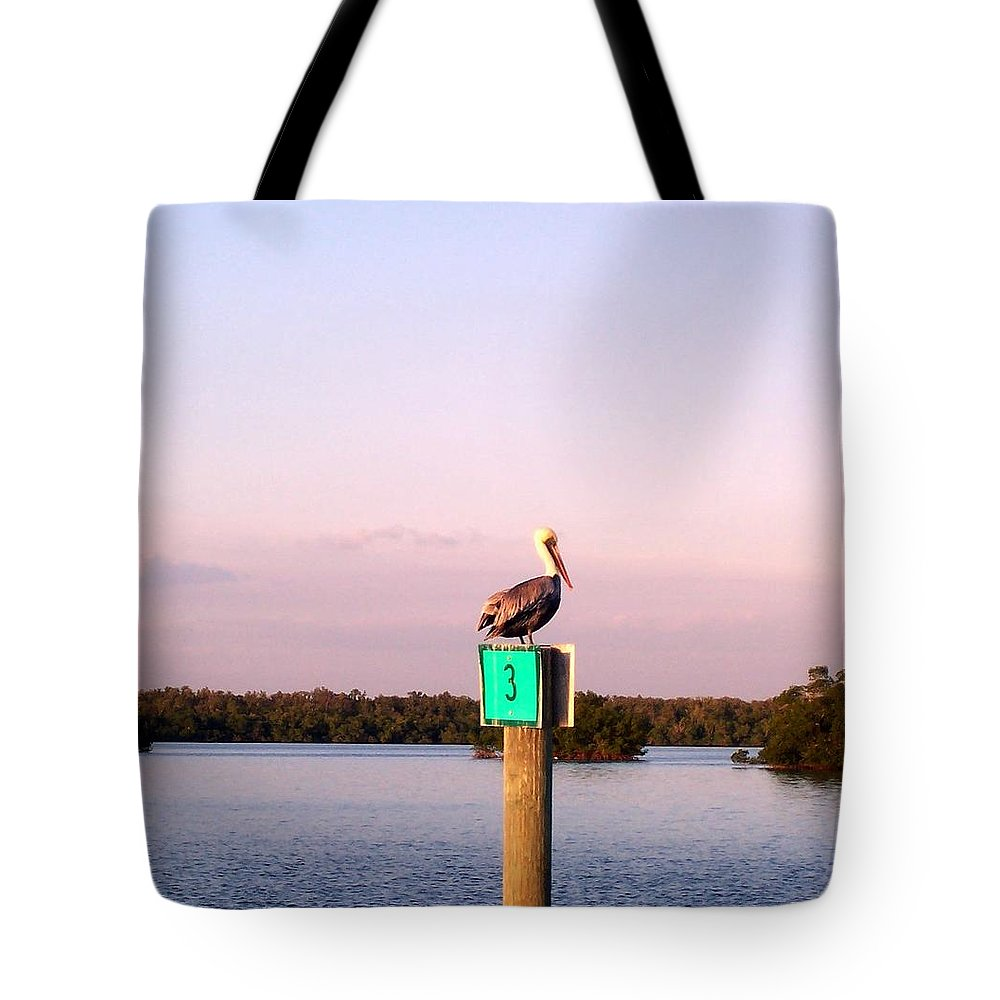 Pelican Tote Bag featuring the photograph Pelican Roost by Elizabeth Klecker