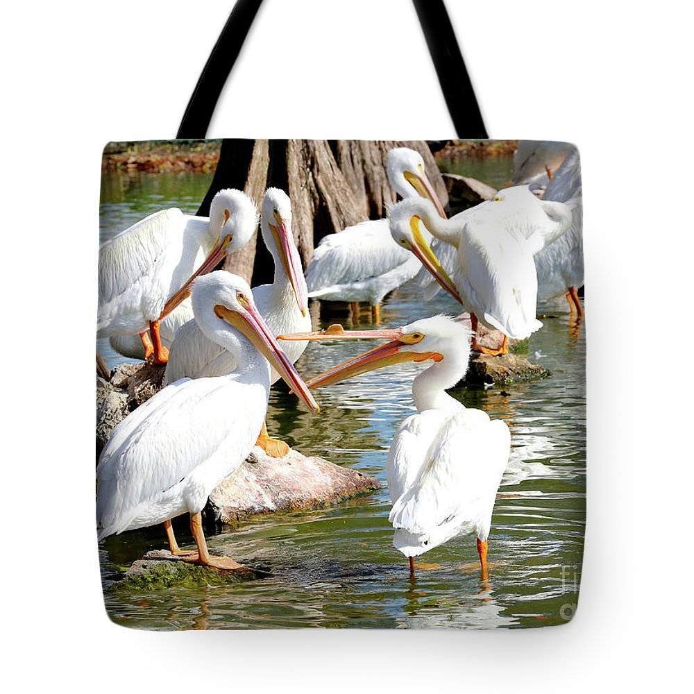 Fighting Birds Tote Bag featuring the photograph Pelican Squabble by Carol Groenen