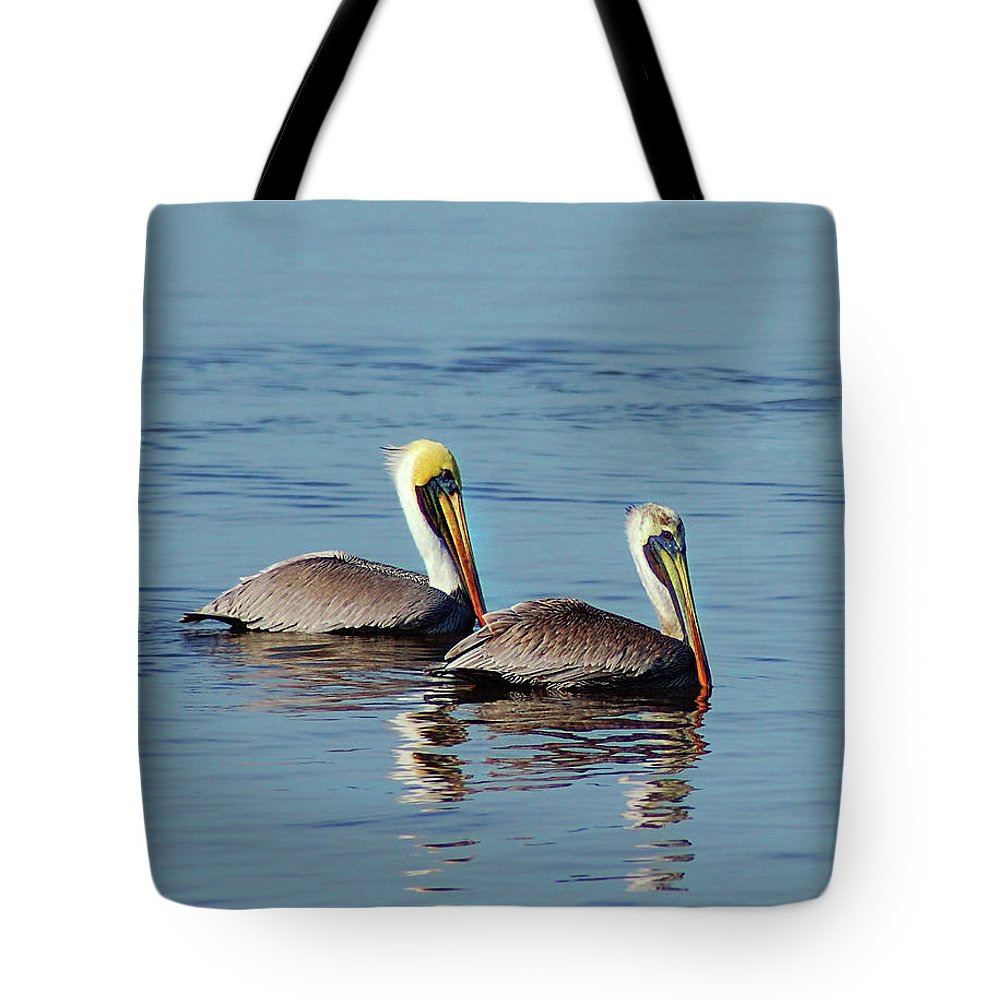 Pelican Tote Bag featuring the painting Pelicans 2 Together by Michael Thomas