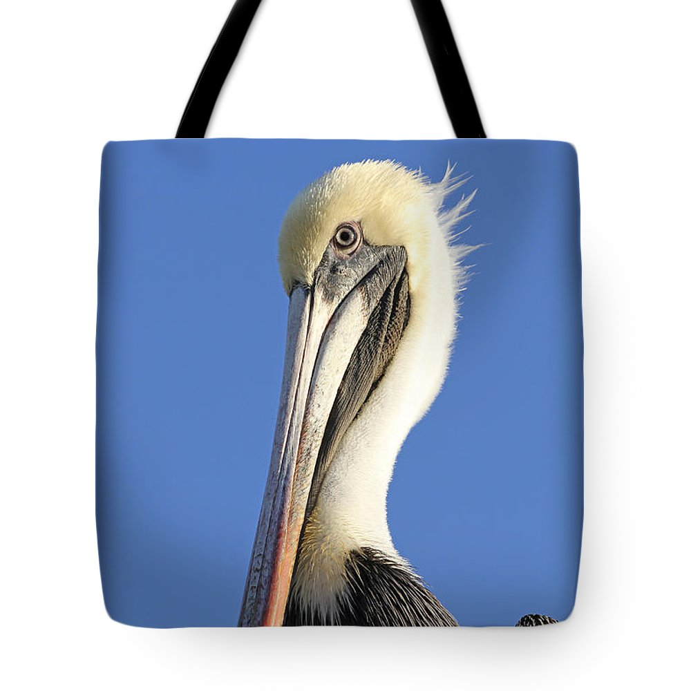 Pelican Tote Bag featuring the photograph Pelican's Good Side by Jim Clark