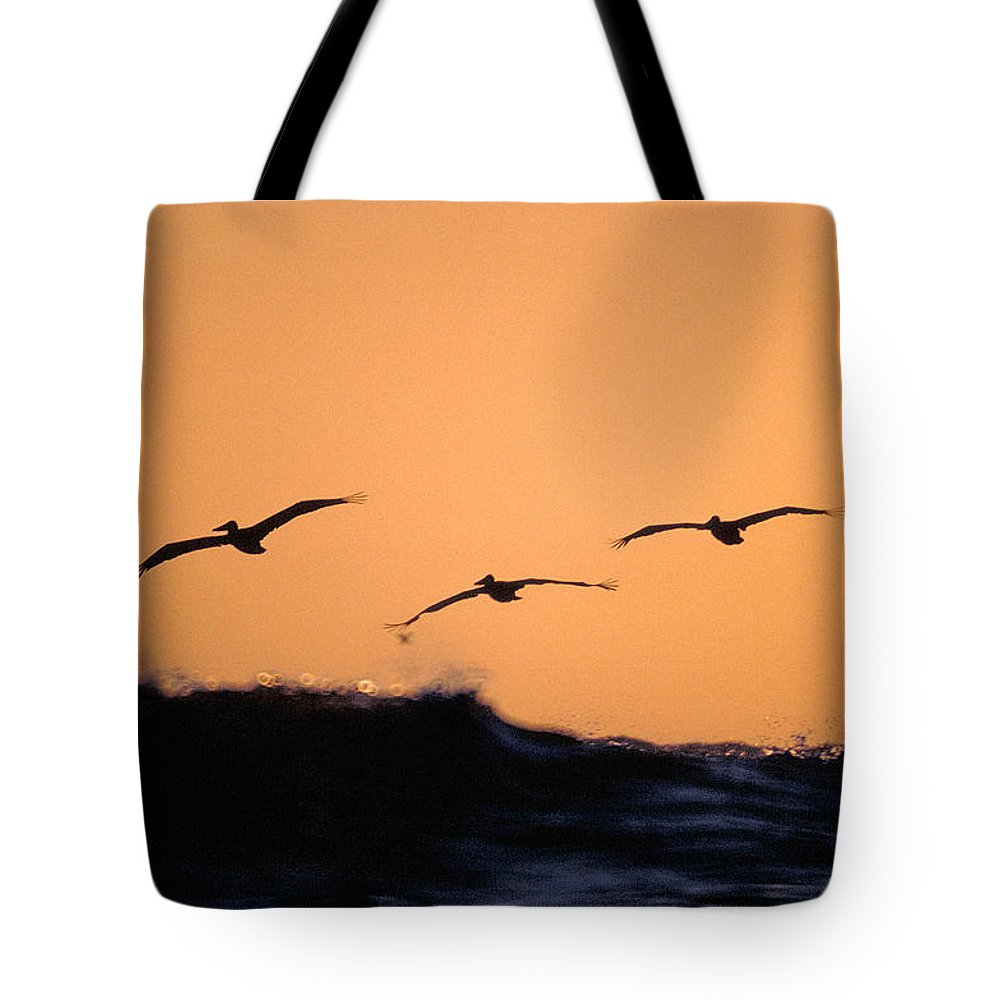 Pelicans Tote Bag featuring the photograph Pelicans over The Pacific by Michael Mogensen
