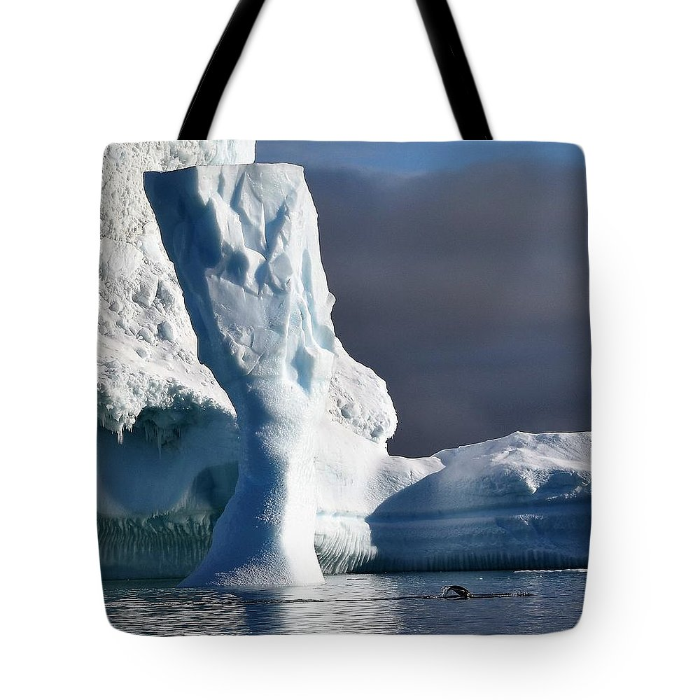 Iceberg Tote Bag featuring the photograph Penguin And Ice by Chris Hanlon
