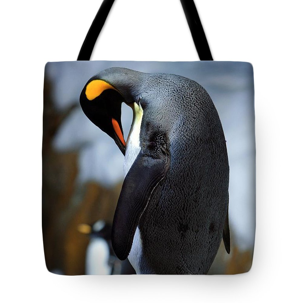 Bird Tote Bag featuring the photograph Penguin by Randy Matthews