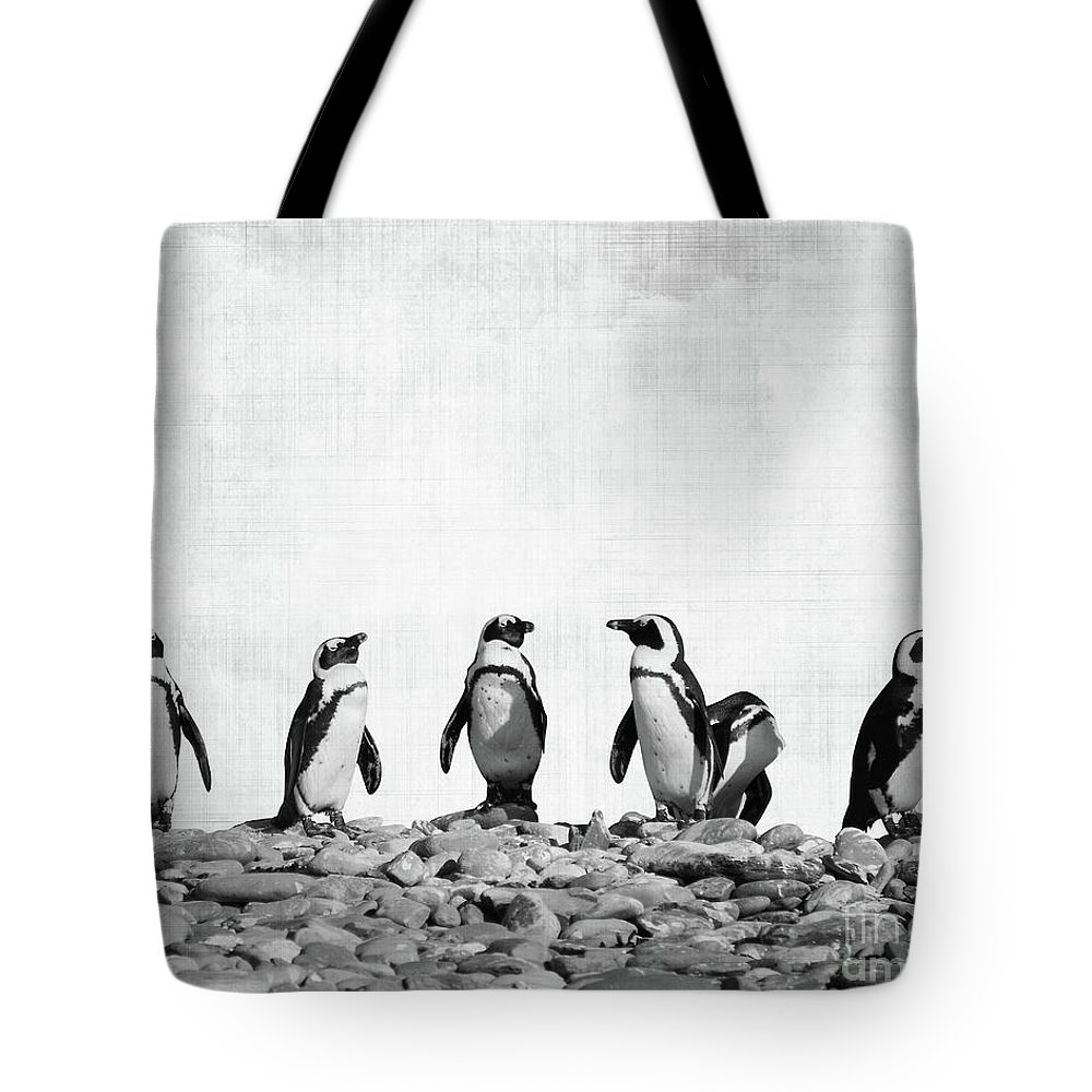 Penguin Photographs Tote Bags