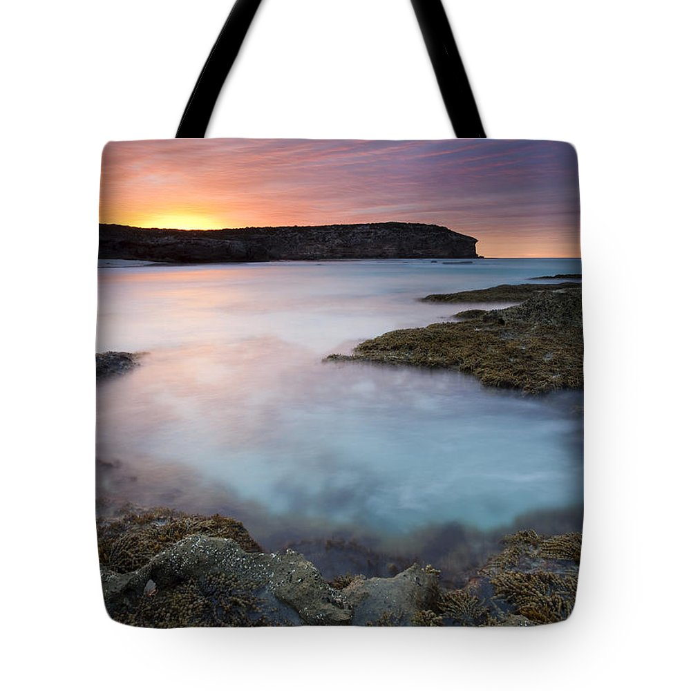 Dawn Tote Bag featuring the photograph Pennington Dawn by Mike Dawson