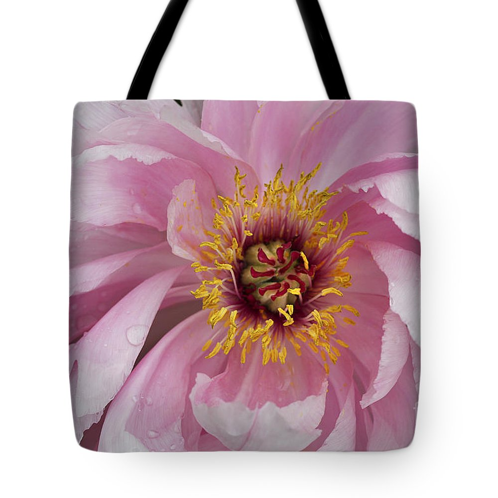 Flower Tote Bag featuring the photograph Peonie In Pink by Deborah Benoit