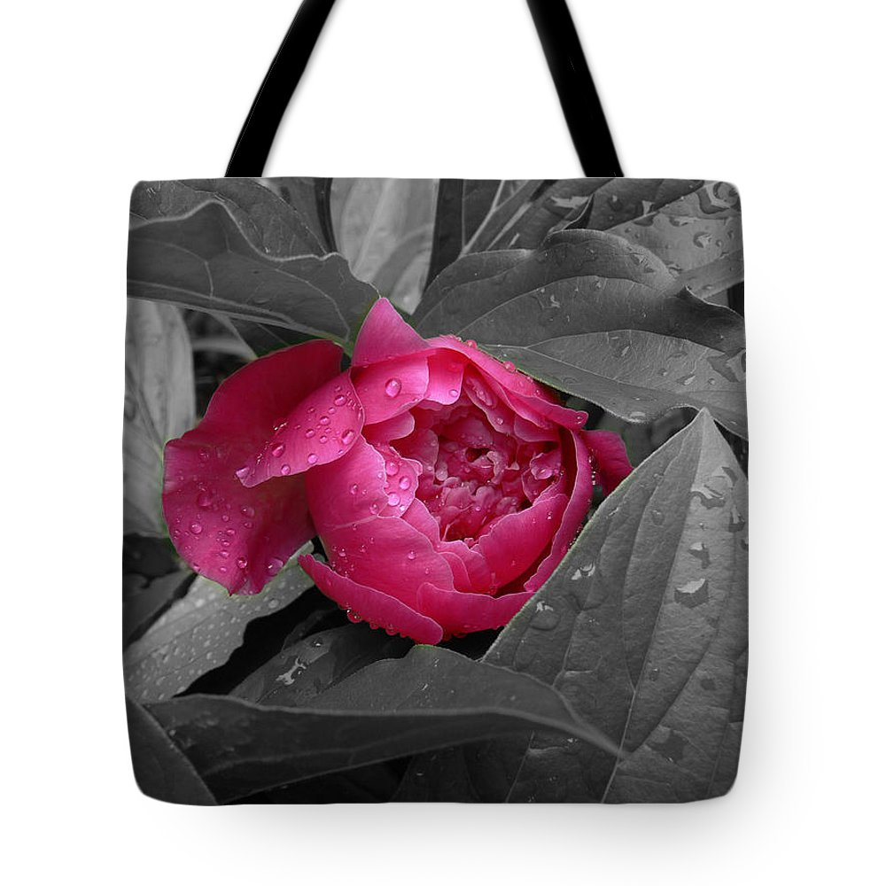 Peonies Tote Bag featuring the photograph Peonies by Nancie DeMellia