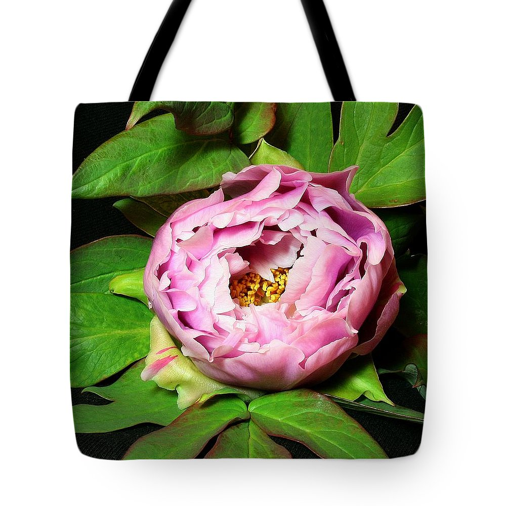 Flower Tote Bag featuring the pyrography Peony 2 by Robert Morin