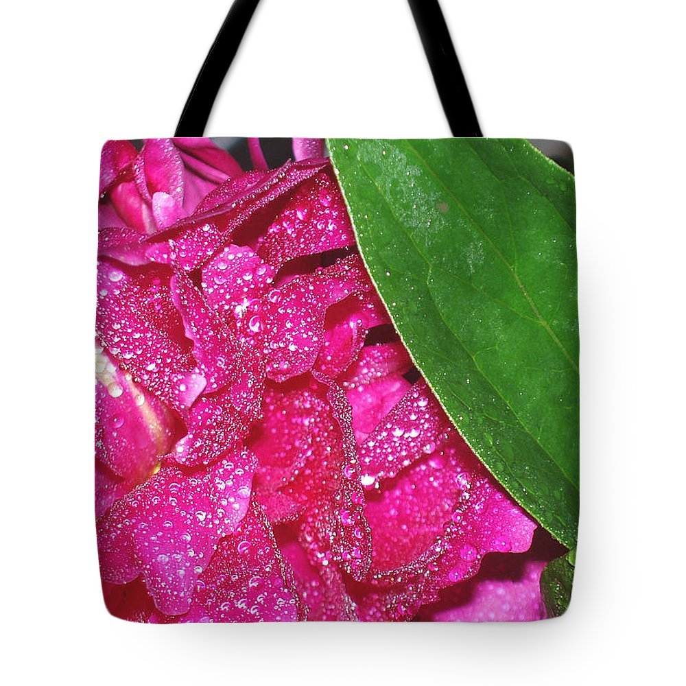 Peony Tote Bag featuring the photograph Peony And Leaf by Nancy Mueller