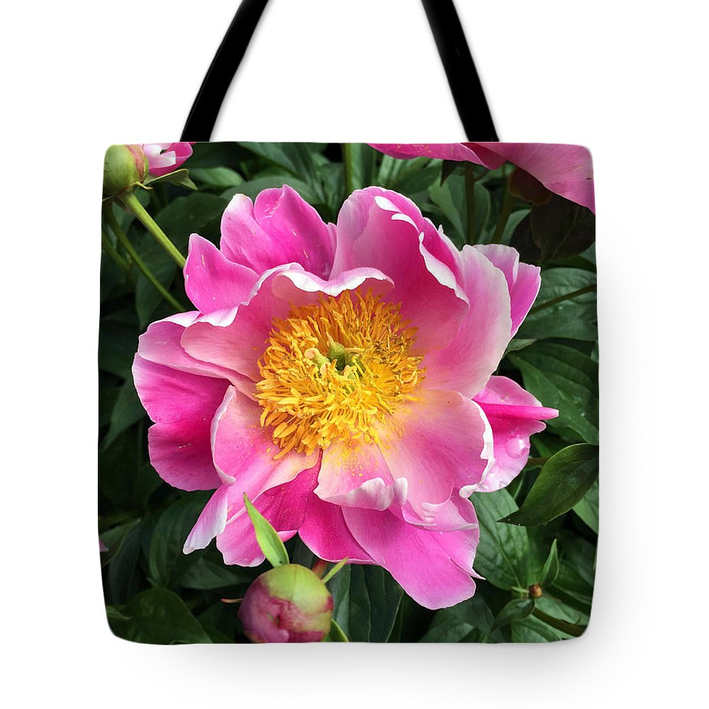 Flower Tote Bag featuring the photograph Peony by Roxanne Marshal