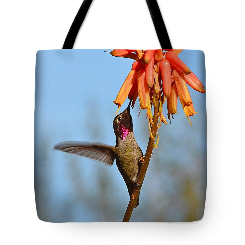Hummingbird Tote Bag featuring the photograph Perched Anna's Feeding by Michael Searcy