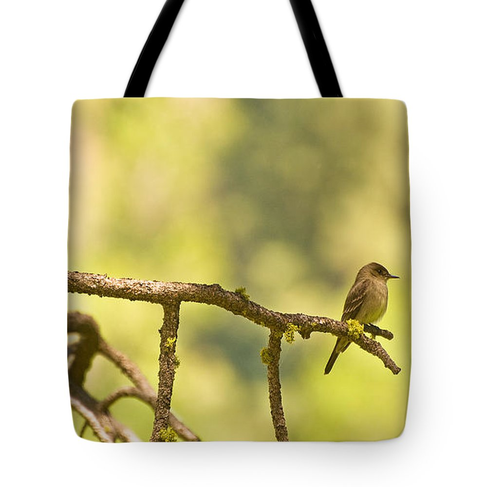 Bird Tote Bag featuring the photograph Perched by Mick Burkey
