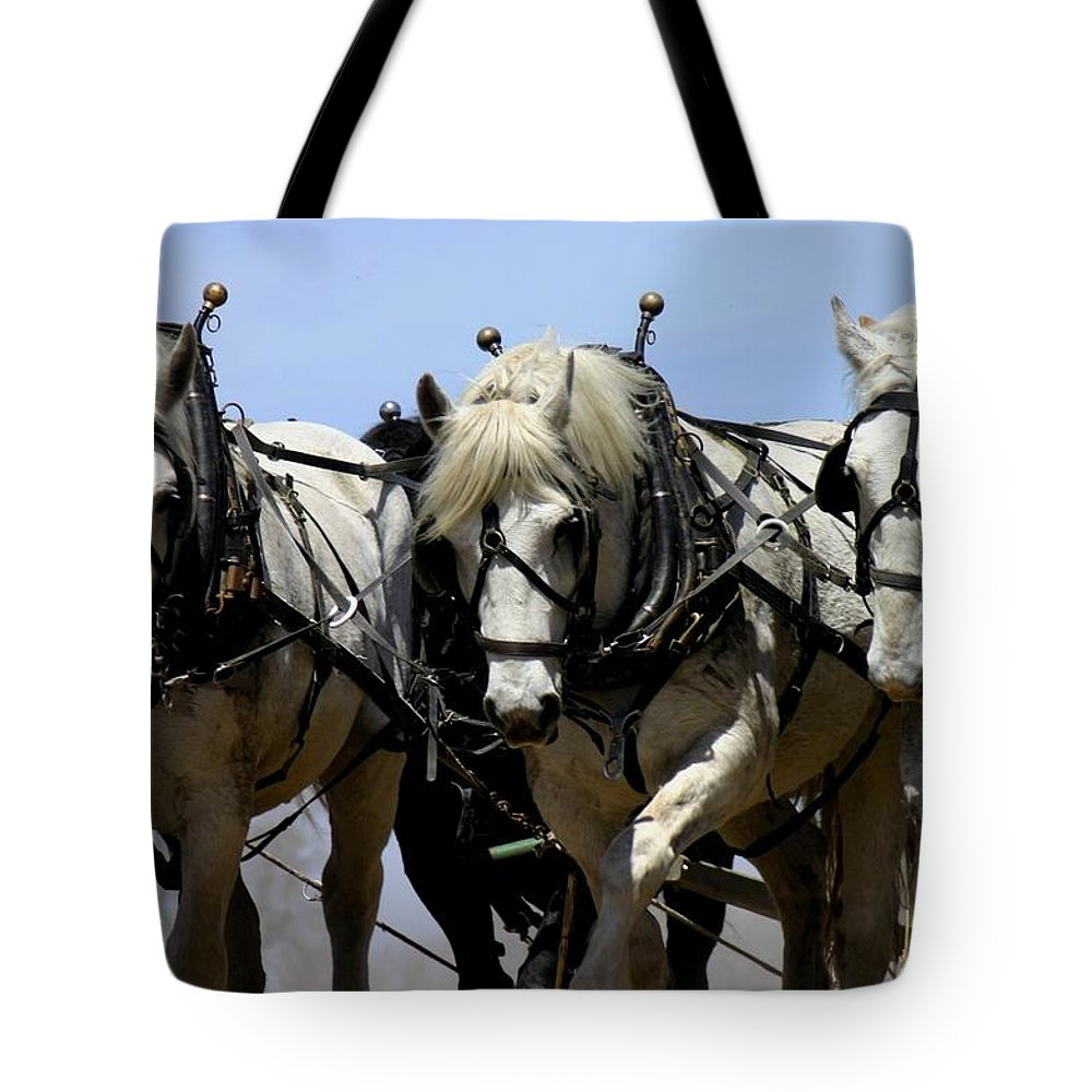 Betsy Lamere Tote Bag featuring the photograph Percherons by Betsy LaMere