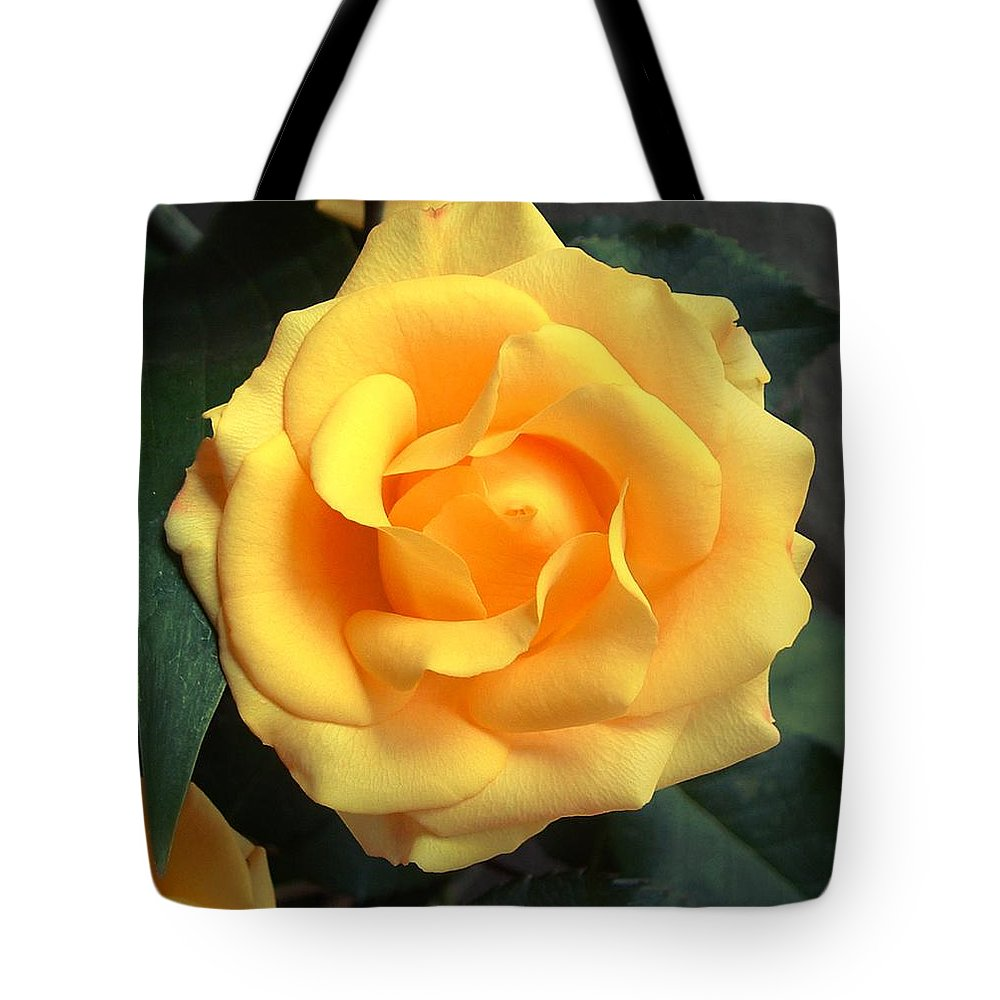 Floral Tote Bag featuring the photograph Perfect Bloom by Kae Cheatham