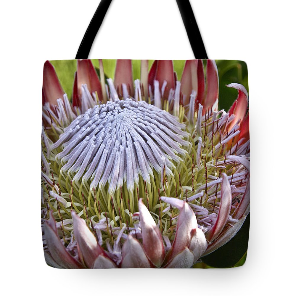 Africa Tote Bag featuring the photograph Perfection In Pink by Michele Burgess
