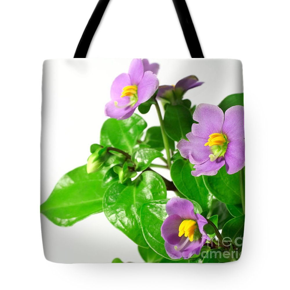 Closeup Tote Bag featuring the photograph Persian Violets by Gaspar Avila