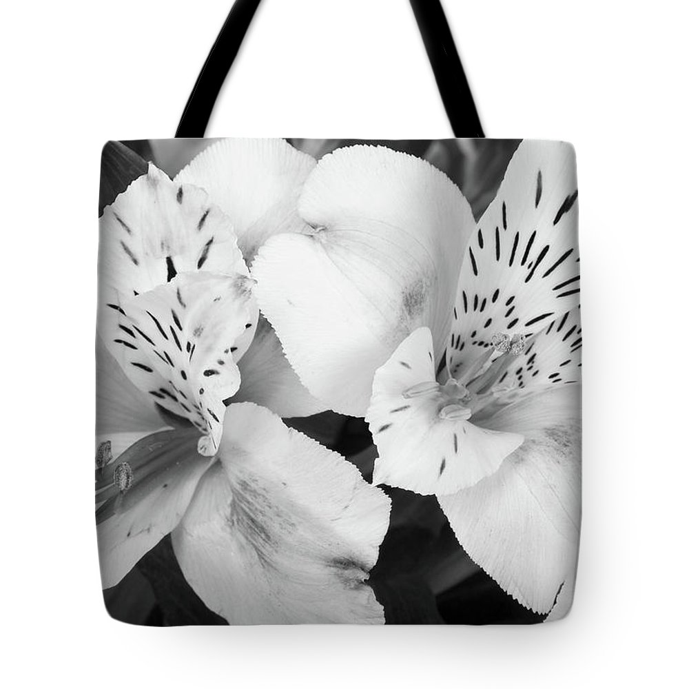 Peruvian Lilies Tote Bag featuring the photograph Peruvian Lilies Flowers Black And White Print by James BO Insogna