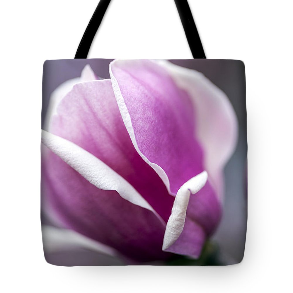 Magnolia Tote Bag featuring the photograph Petals by Edward Kreis