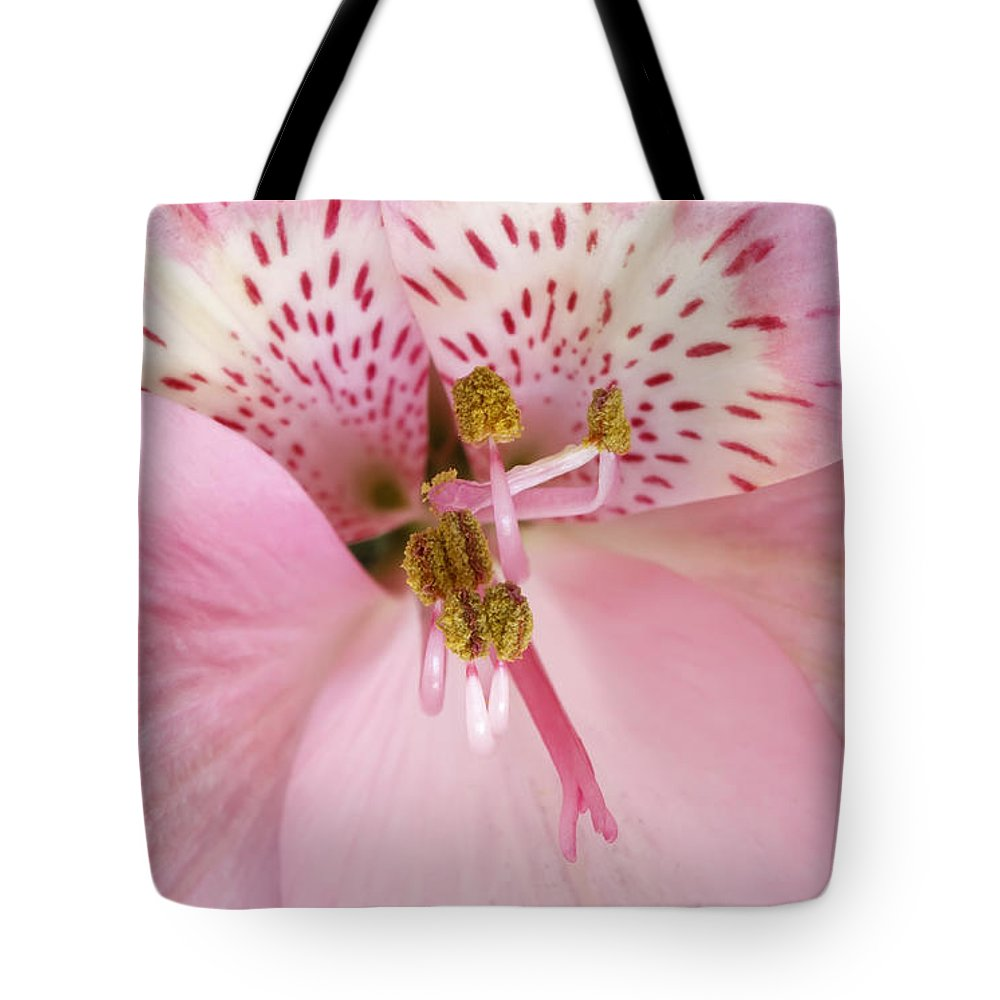 Macro Tote Bag featuring the photograph Petals Of Pink by Dee Johnson